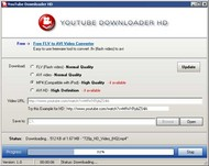Easy Video Downloader small screenshot