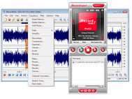 iRecordMax Sound Recorder 2010 small screenshot