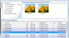 Duplicate File Finder: Free File Management Utility