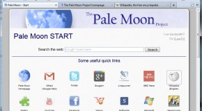 Pale Moon: An Optimized For Windows Browser Based on Firefox
